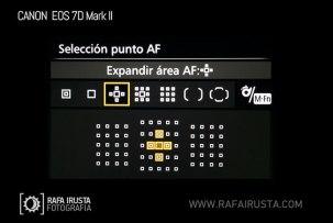test7DII_AF